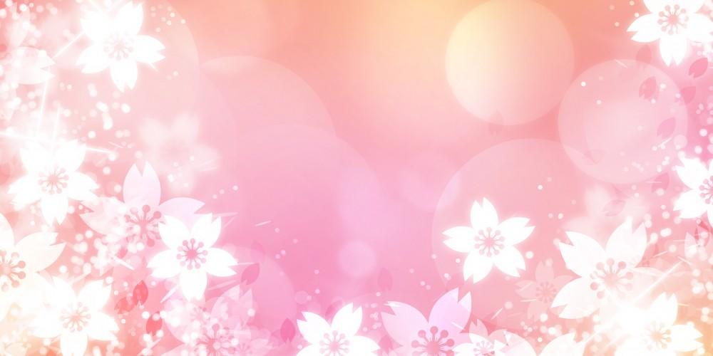 【国内ブランド】♡♡杢目金屋(もくめがねや)♡♡【第1位】